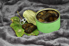 Grape leaves  in the can. Royalty Free Stock Image