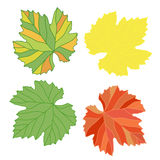 Grape leaves. Decorative autumn vine leaves painted in different. Decorative autumn vine leaves painted in different  colors (red, yellow, green, orange Royalty Free Stock Photos