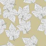 Grape leaves. Seamless pattern. Royalty Free Stock Images