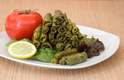 Grape leaves stuffed with meat and rise. Stock Images