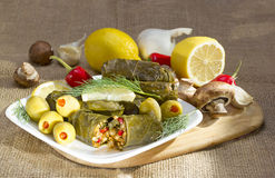 Grape leaves stuffed with rice. Royalty Free Stock Image