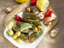 Grape leaves stuffed with rice. Stock Photos
