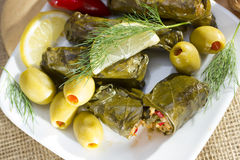 Grape leaves stuffed with rice. Stock Image