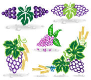 Grape lilac icon dew Royalty Free Stock Image