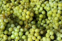 Grape at the market Royalty Free Stock Image