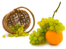 Grape at orange Royalty Free Stock Photos
