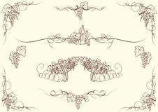 Grape ornaments. Set of grape drawing ornaments, each of them group separately royalty free illustration