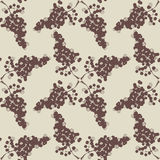 Grape pattern drawing style Stock Image