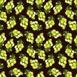 Grape green pattern. Grape pattern with green berries and black background, watercolor grape stock image