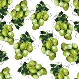 Green grape pattern vector illustration