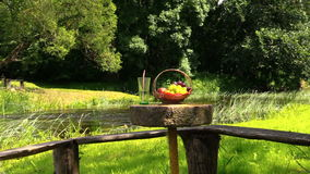 Grape peach fruits and glass with champagne cider on millstone. Wicker basket with grape and peach fruits and glass with champagne cider on millstone table near stock video
