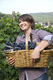 Grape picker Royalty Free Stock Photos