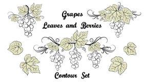 Grape, Pictogram Set Stock Photography