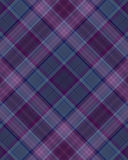 Grape plaid. A purple plaid pattern Royalty Free Illustration