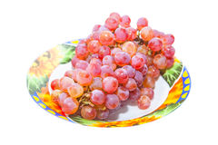 Grape in the plate Stock Image