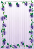 Grape Purple Frame_eps. Illustration of grape purple frame with stripe background Stock Photography