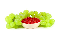 Grape and red currant Stock Image