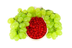 Grape and red currant Royalty Free Stock Photos