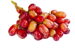 Grape. Red grape on the white background Royalty Free Stock Photos
