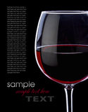 Grape red wine Royalty Free Stock Image