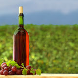 Grape and red wine bottle Royalty Free Stock Images