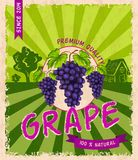 Grape retro poster Stock Photos