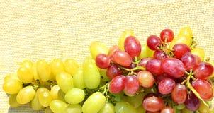 Grape on sacking background Stock Images