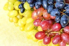 Grape on sacking background Stock Photos