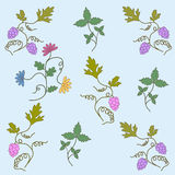Grape seamless pattern. Seamless background from elements of plants, flowers, a grapevine. Vector Royalty Free Stock Photography