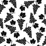 Grape seamless pattern Stock Photos
