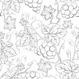 Grape Seamless Pattern. Royalty Free Stock Images