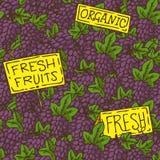 Grape Seamless Pattern Royalty Free Stock Photos