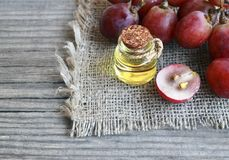 Grape seed oil in a glass jar and fresh grapes on old wooden table.Bottle of organic grape seed oil for spa and bodycare. Grape seed oil in a glass jar and Royalty Free Stock Photo