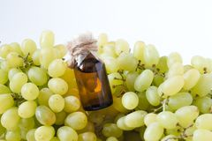 Grape seed oil: seed extract has antioxidant and nourishing the skin. . Grape seed oil: seed extract has antioxidant and nourishing the skin Royalty Free Stock Photo