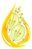 Grape seed oil. Stylized drop. vector illustration