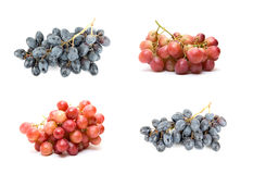 Grape set Stock Photo