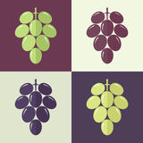 Grape. Set Stock Photos