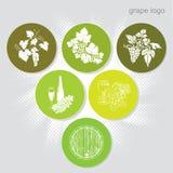 Grape sign (icons) Stock Photos