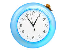 Grape snail climbing on a clock Royalty Free Stock Photography