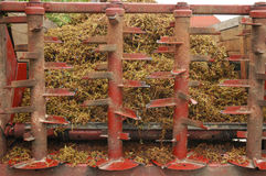 Grape stalks wagon with residues of crushing grapes Stock Photo