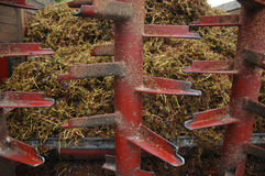 Grape stalks wagon with residues of crushing grapes Stock Photography