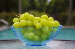 Grape by the swimmimg pool. Grape in glass plate on table by the swimming pool Stock Images