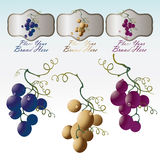 Grape three sorts with brand. Labels, red, white and rose Royalty Free Stock Images