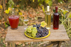From grape to wine Royalty Free Stock Images