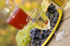 From grape to wine. A still life composition with grape, must and wine Stock Images