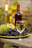 From grape to wine. A still life composition with grape and wine Royalty Free Stock Photo