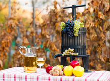 From grape to wine Stock Photo