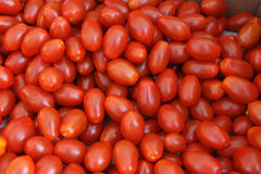 Grape tomato Stock Photos