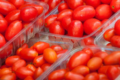 Grape tomatoes Stock Photo