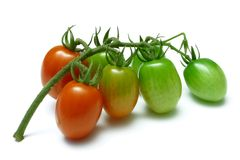 'Grape' Tomatoes Stock Images
